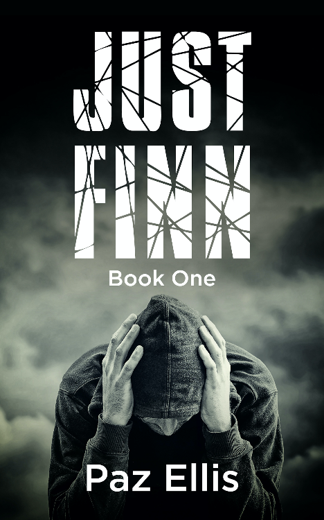 New book: Just Finn Book One