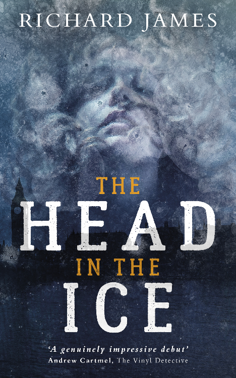 New book: The Head In The Ice