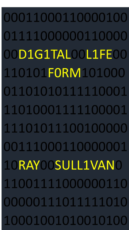 Digital Life Form by Ray Sullivan